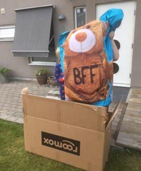Vinnare av Roomox BFF